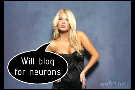 Will blog for neurons