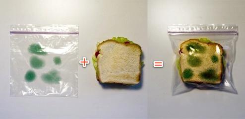 Metoda de a-ti proteja sendvisul
