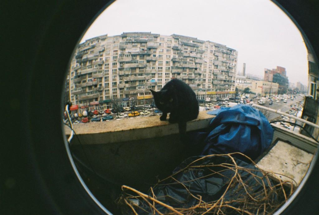 Cita pe balcon