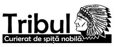 Primul logo Tribul