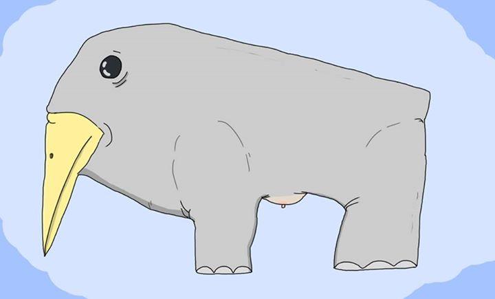 Am desenat un elefant cu bicicleta