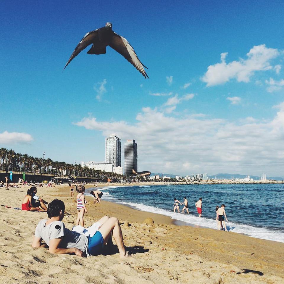 Barcelona în 17 poze