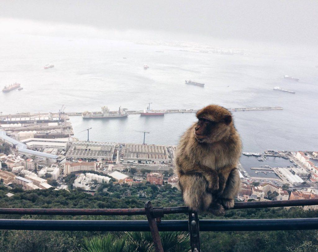După trei zile singur în Gibraltar